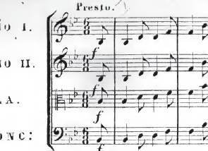 Haydn11