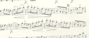 08z23shbrt8
